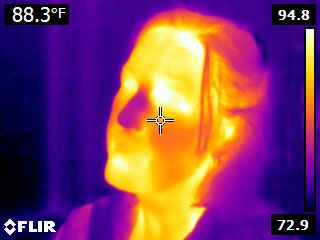 Rachel has a cold nose (infrared)