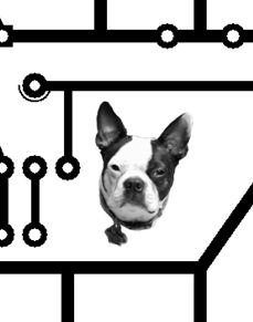 Bones the Boston Terrier on a PCB mask